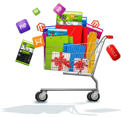 Important Information about Ecommerce Website Development