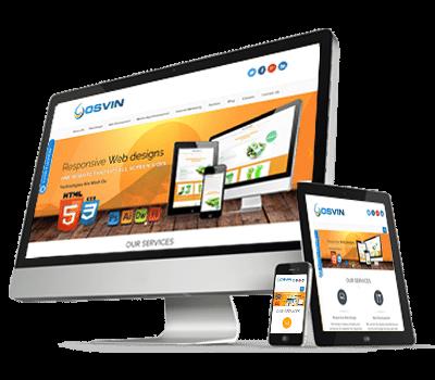 Frisco website development