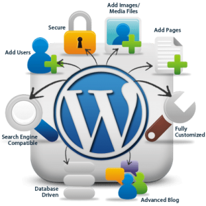 Wordpress Solutions BlueMatrix Media